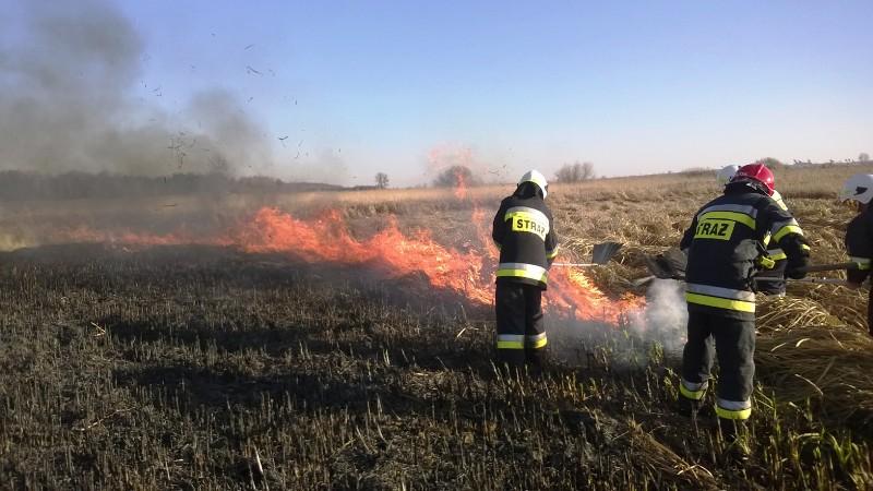 mt_gallery:Pożary traw, łąk i nieużytków w woj. lubelskim.